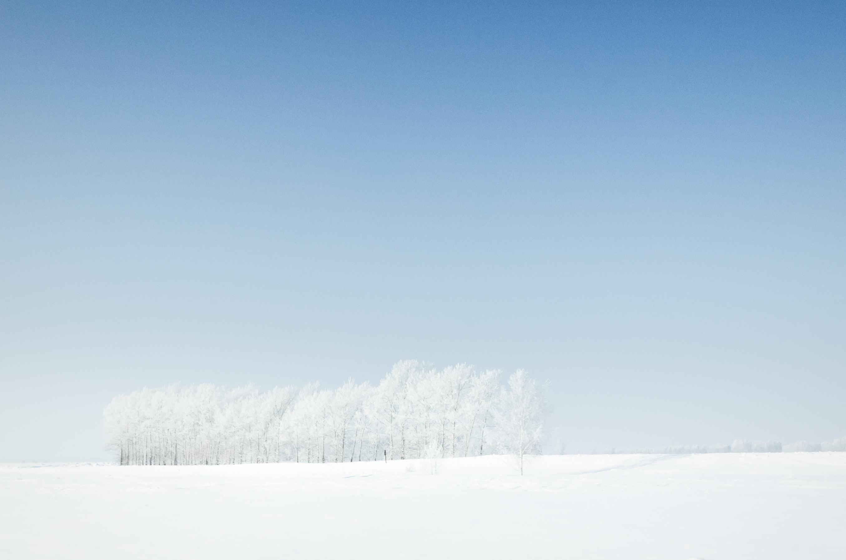 Background trắng đơn giản
