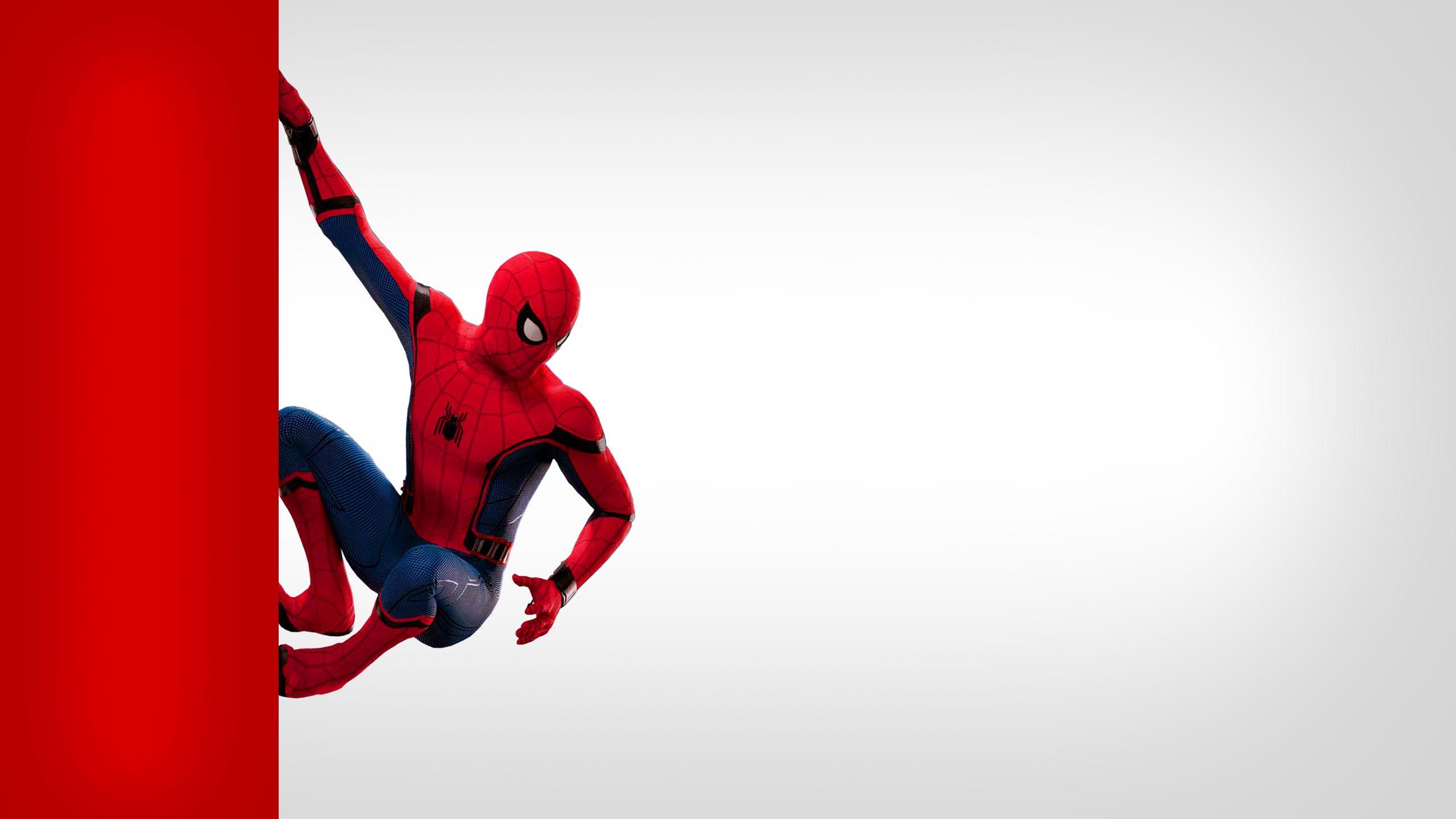 Hình ảnh Spider Man