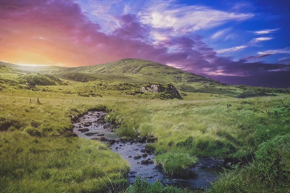 Background cánh đồng thiên nhiên