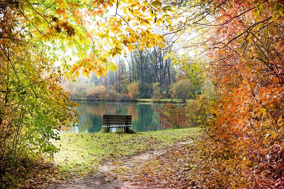 Background cảnh vật thiên nhiên