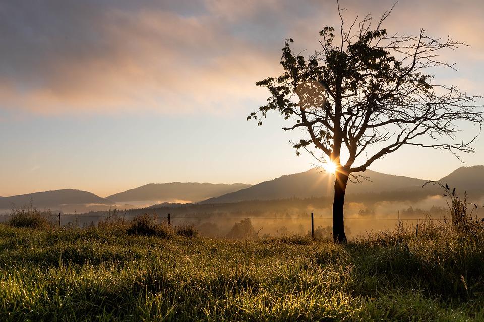 Background thiên nhiên đẹp về chiều