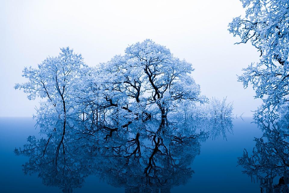 Background thiên nhiên mùa đông