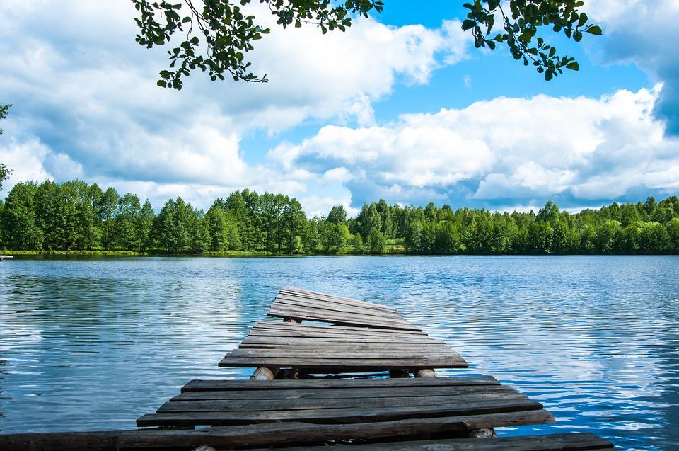 Background thiên nhiên trong lành