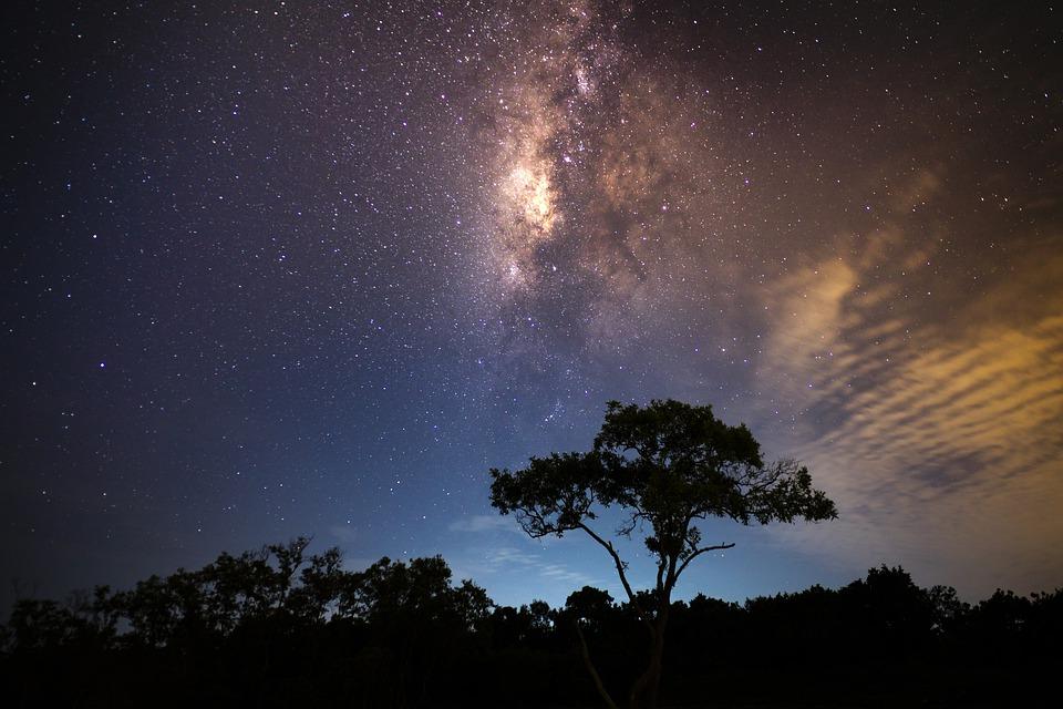 Background thiên nhiên vào ban đêm