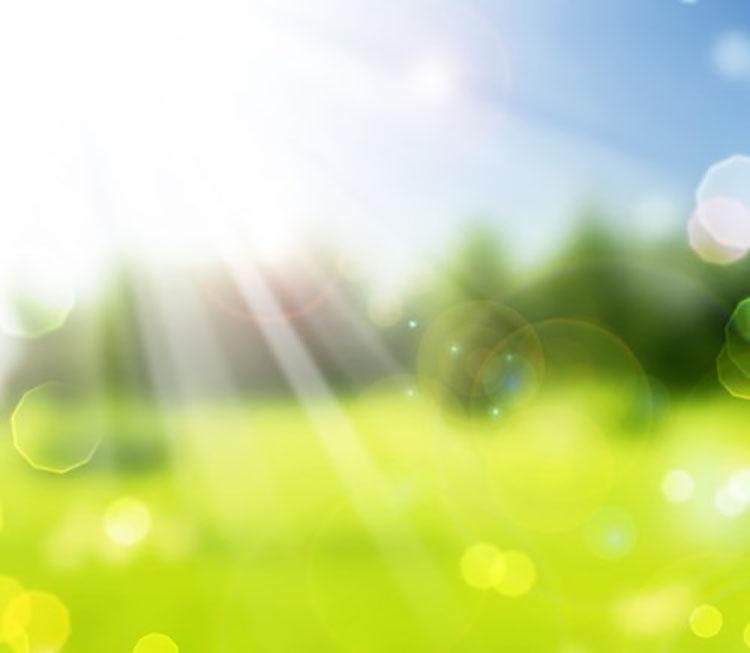 Background thiên nhiên xanh