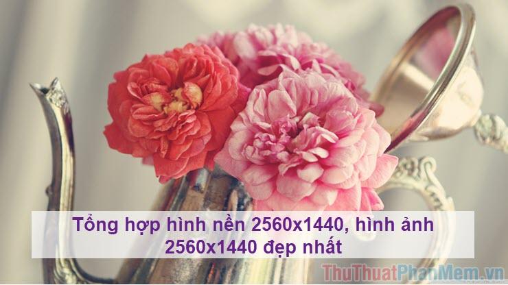 Tổng hợp hình nền 2560x1440, hình ảnh 2560x1440 đẹp nhất