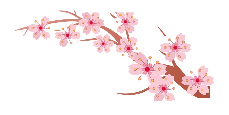 Ảnh đẹp cành hoa đào