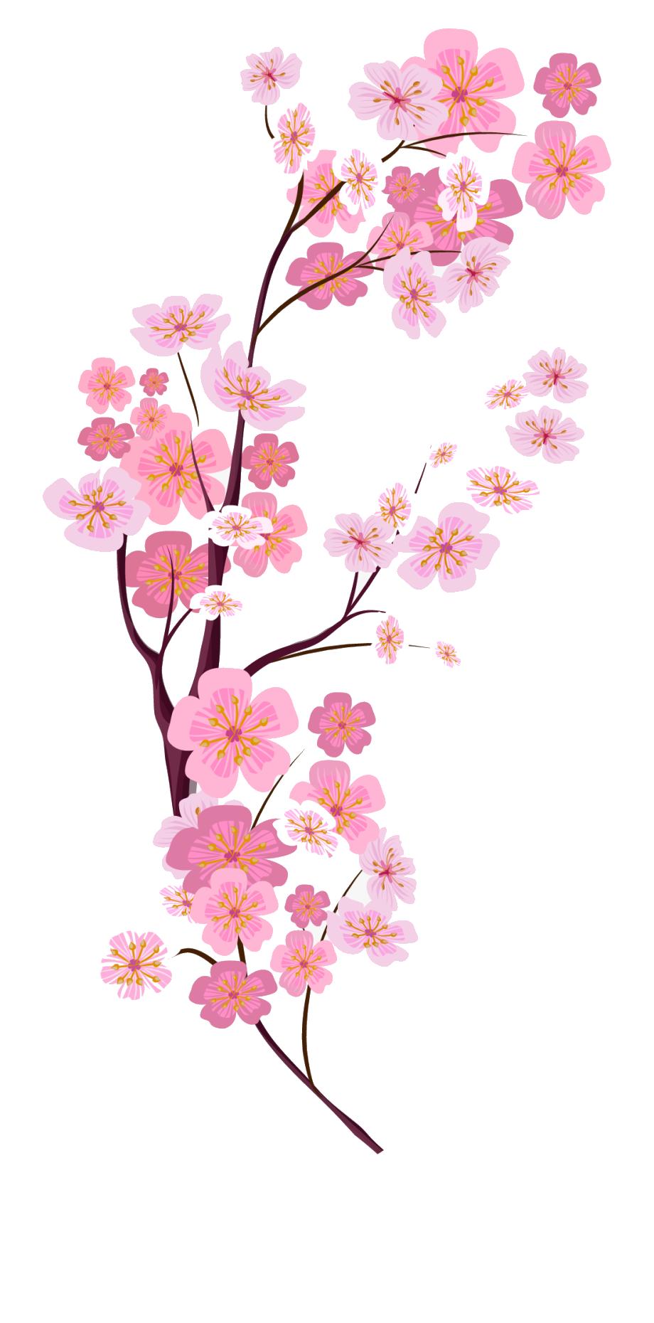 Ảnh vẽ hoa đào