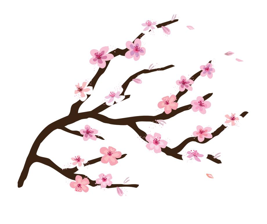Hình ảnh cành hoa đào PNG