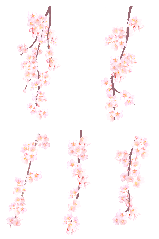 Hình ảnh cây hoa đào đẹp