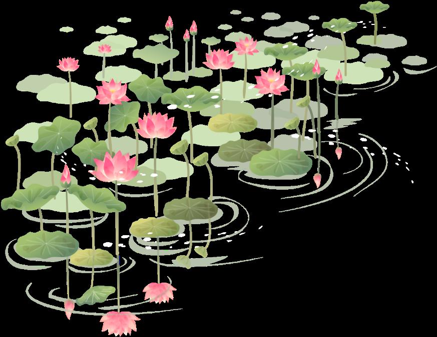 Hình ảnh đầm hoa sen PNG