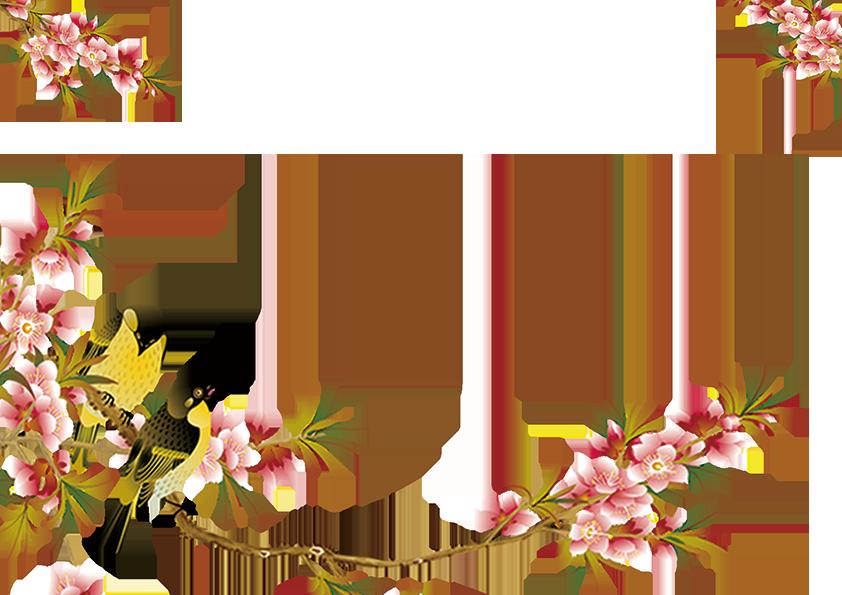 Hình ảnh hoa đào đẹp nhất