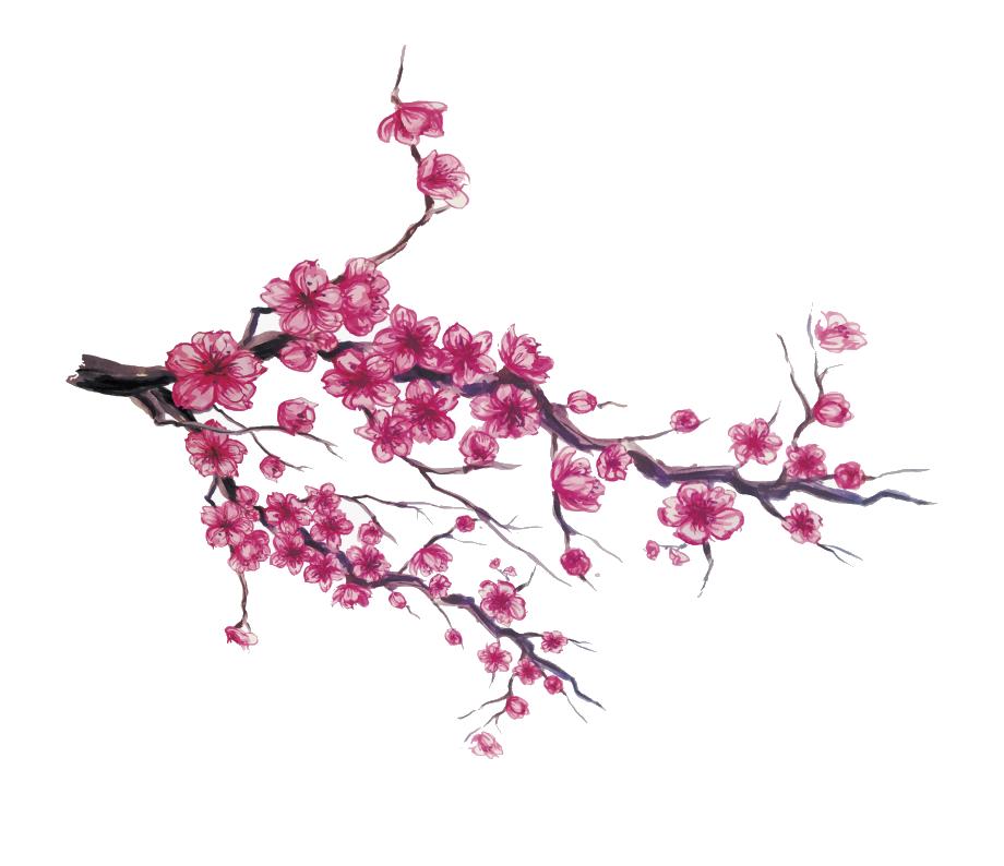 Hình ảnh hoa đào đỏ