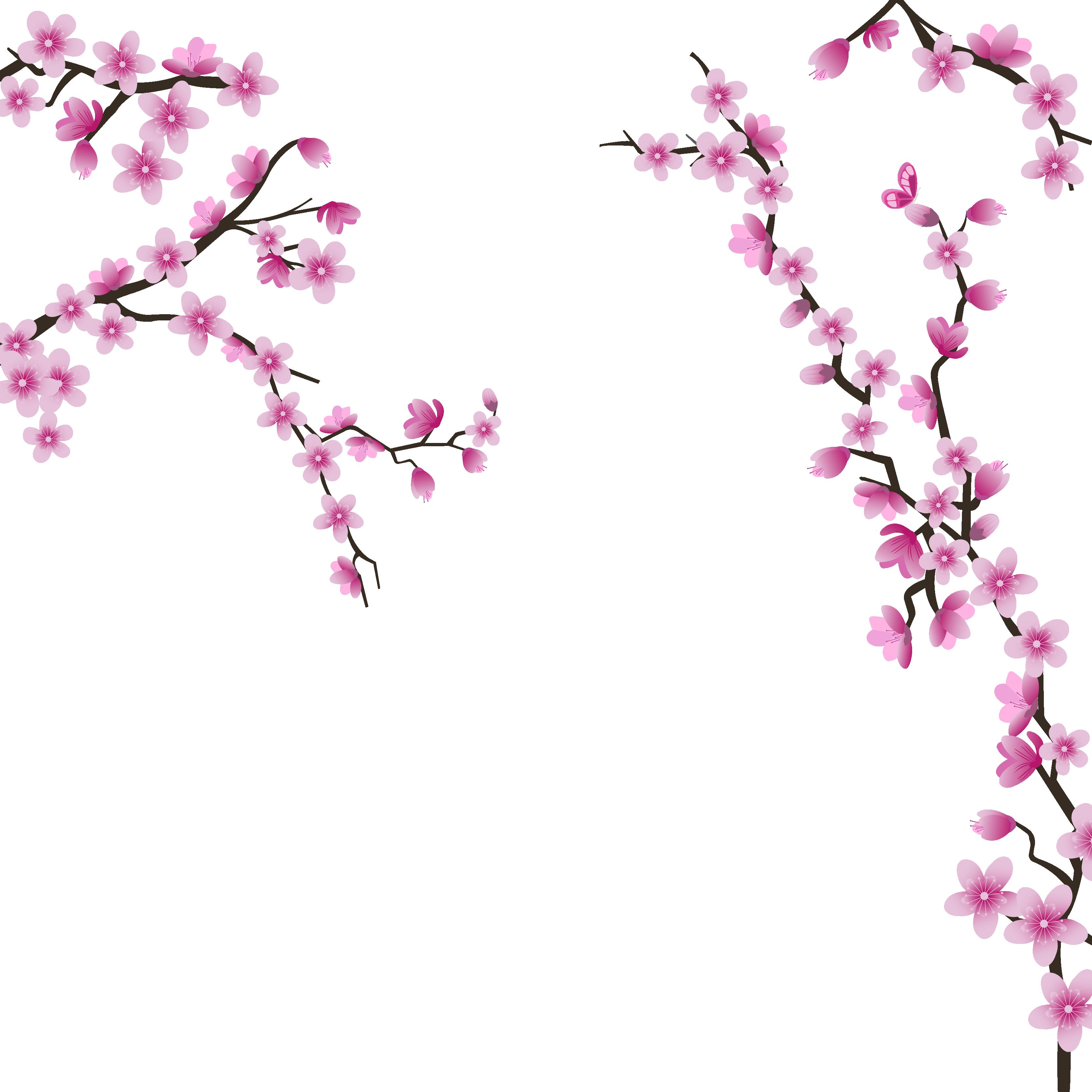 Hình ảnh hoa đào hồng đẹp
