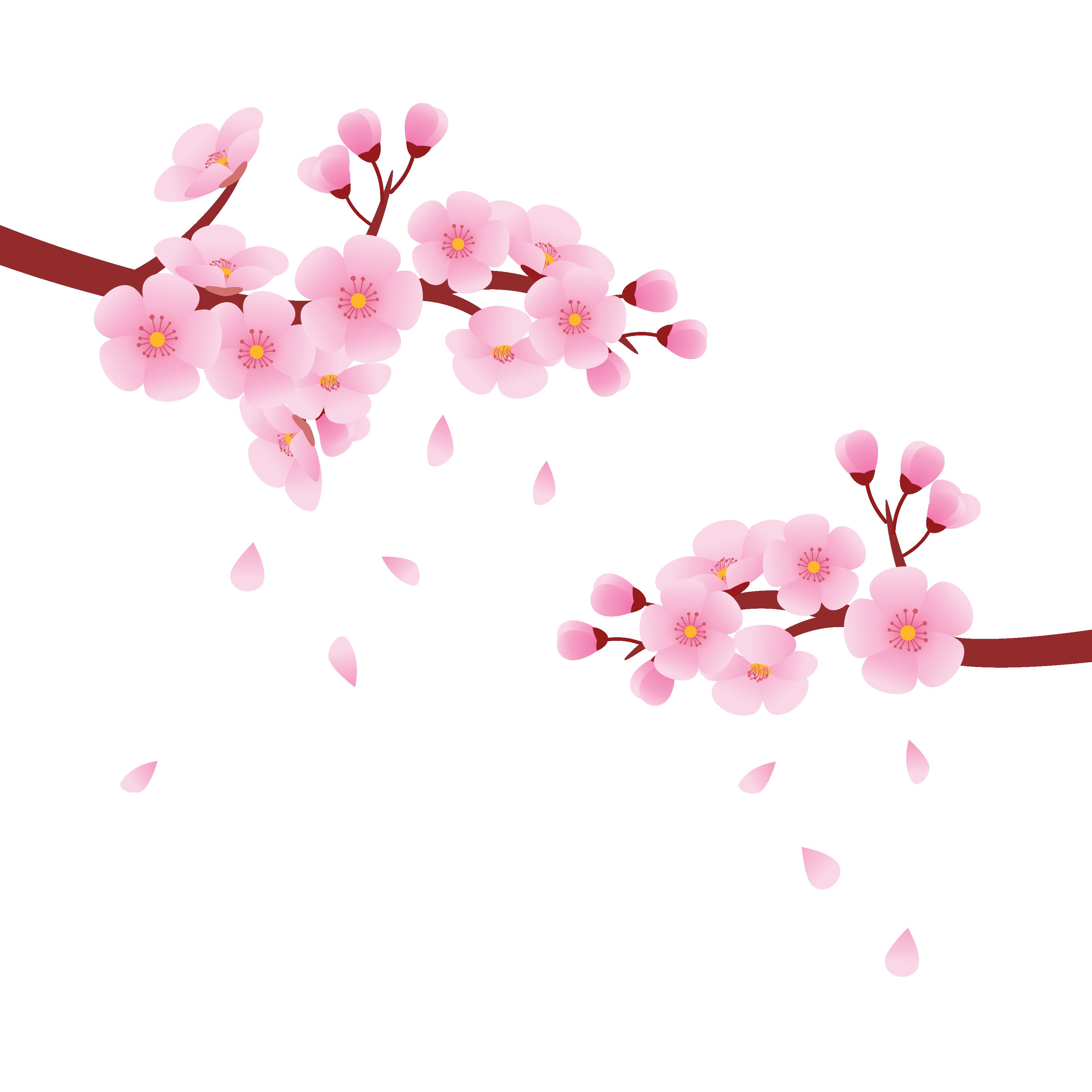 Hình ảnh hoa đào màu hồng đẹp