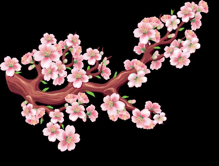 Hình ảnh hoa đào màu hồng