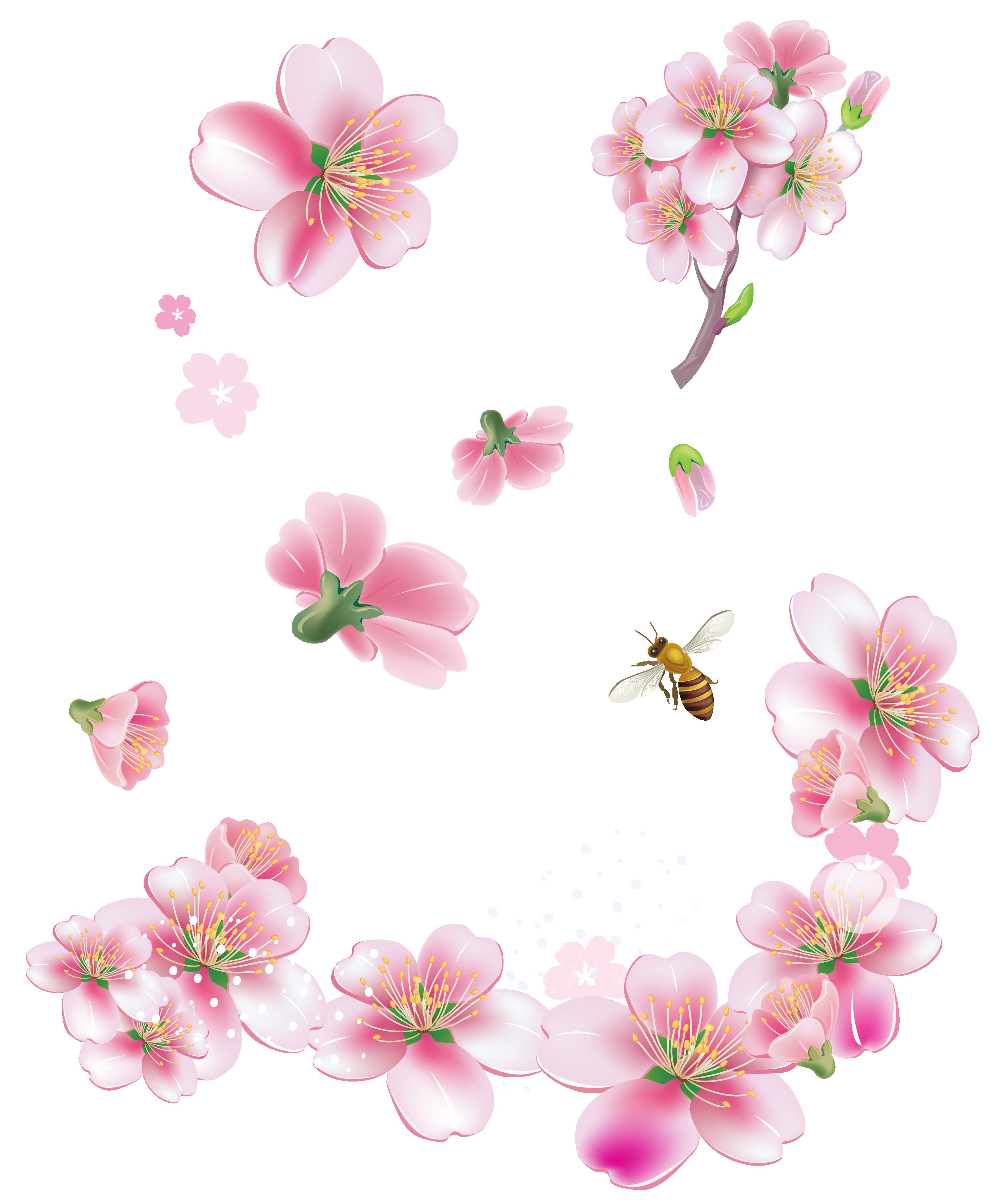 Hình ảnh hoa đào và chú ong