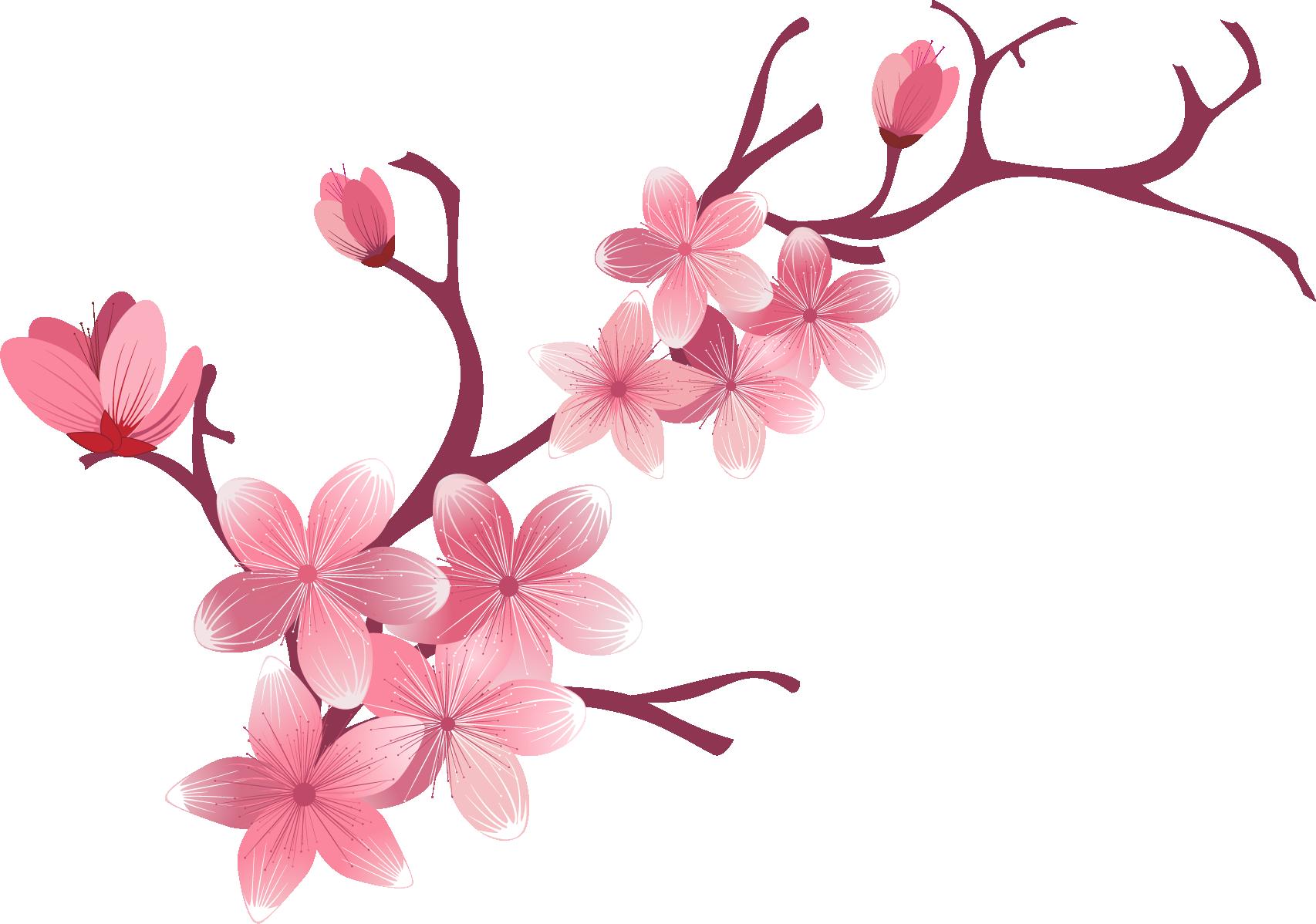 Hình ảnh hoa đào vector