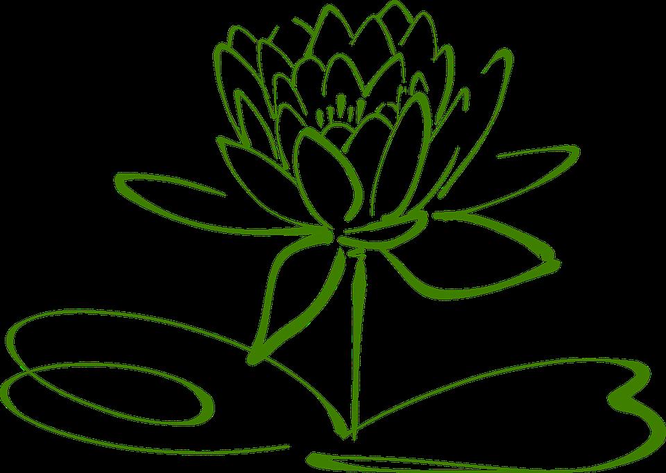 Hình ảnh vector hoa sen