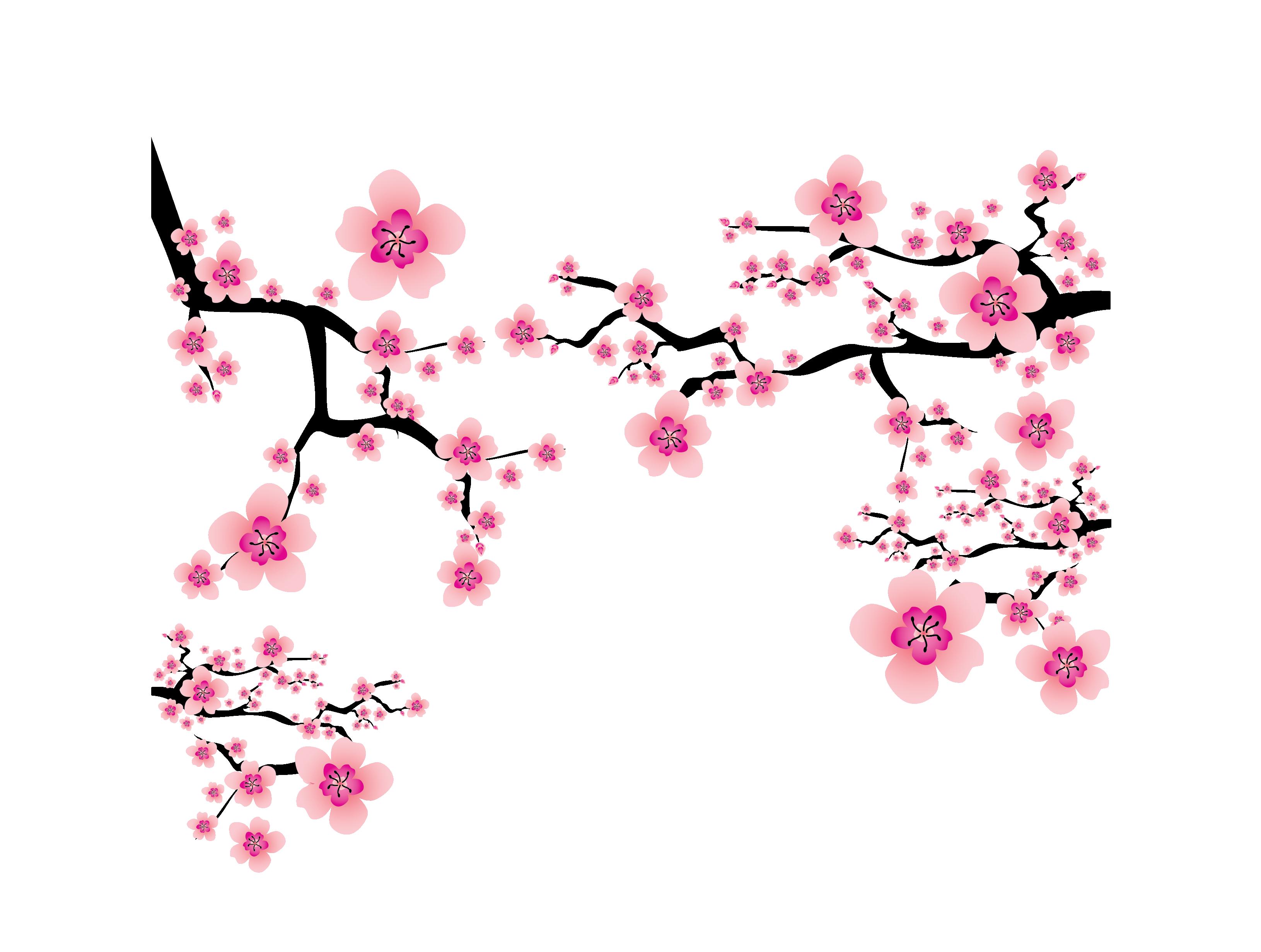 Hoa đào đẹp PNG
