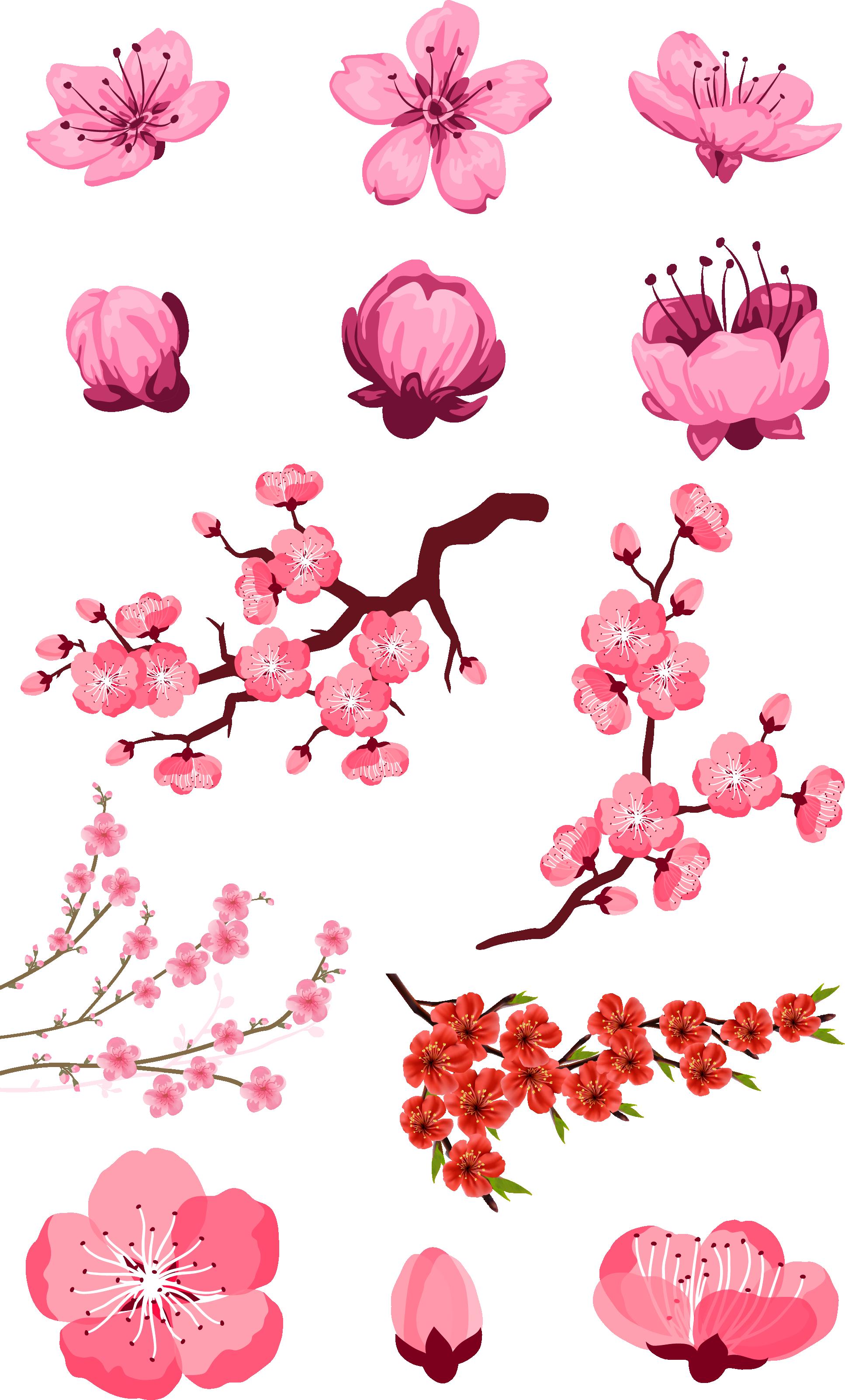 Những hình ảnh hoa đào đẹp