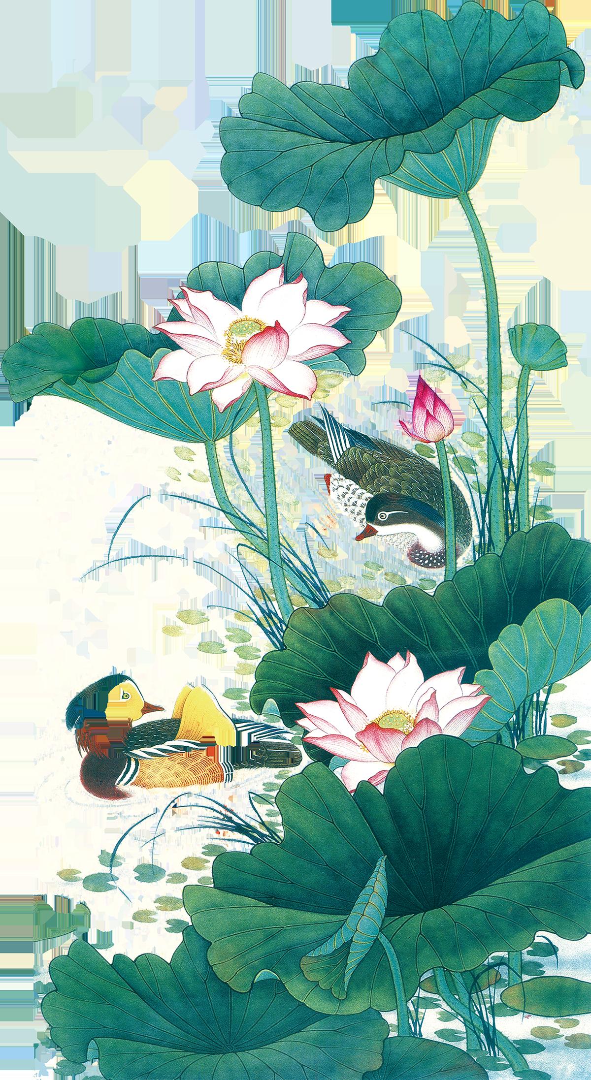 Tranh hoa sen PNG