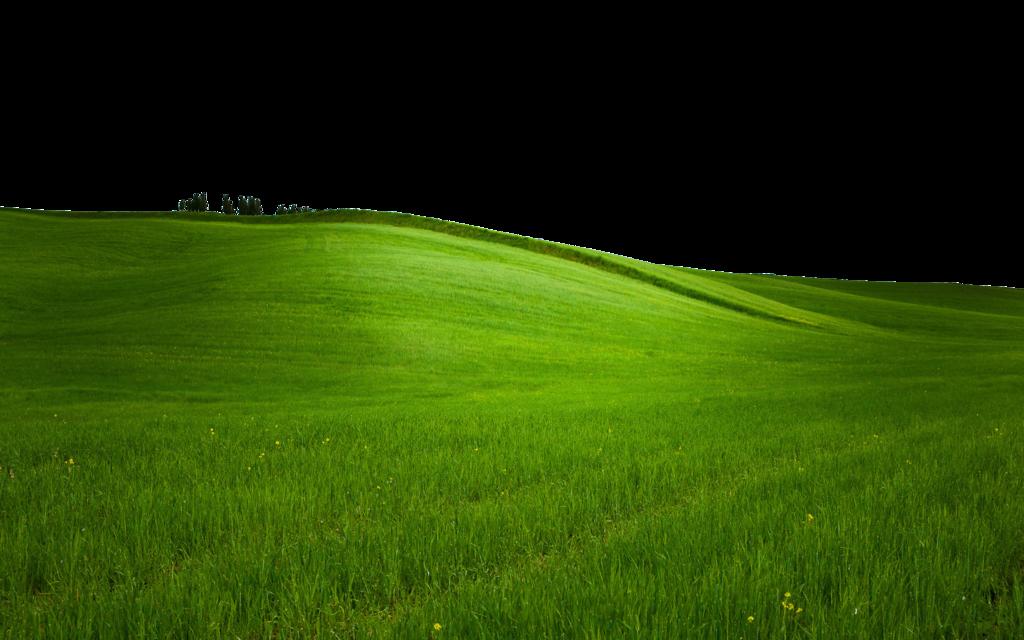 Background đồng cỏ PNG