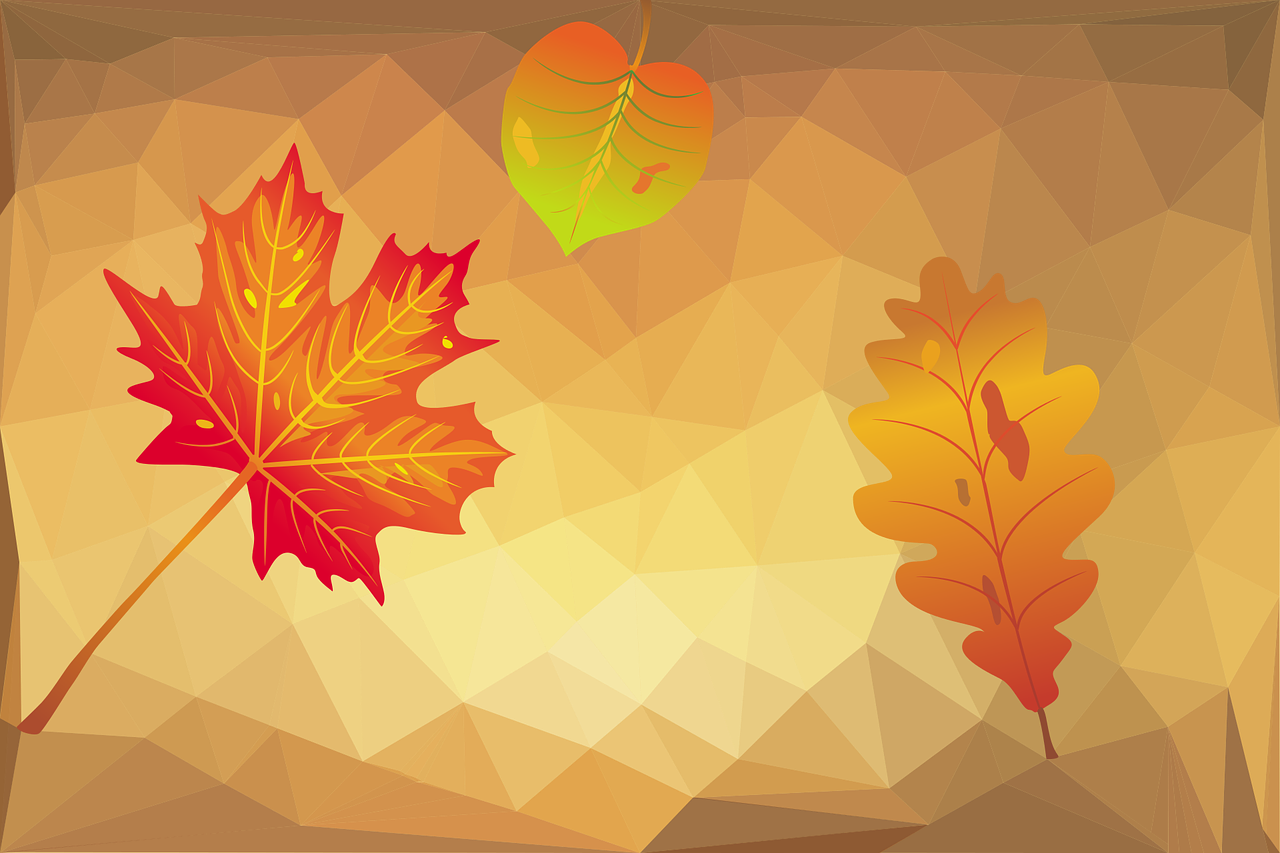 Background mùa thu đẹp